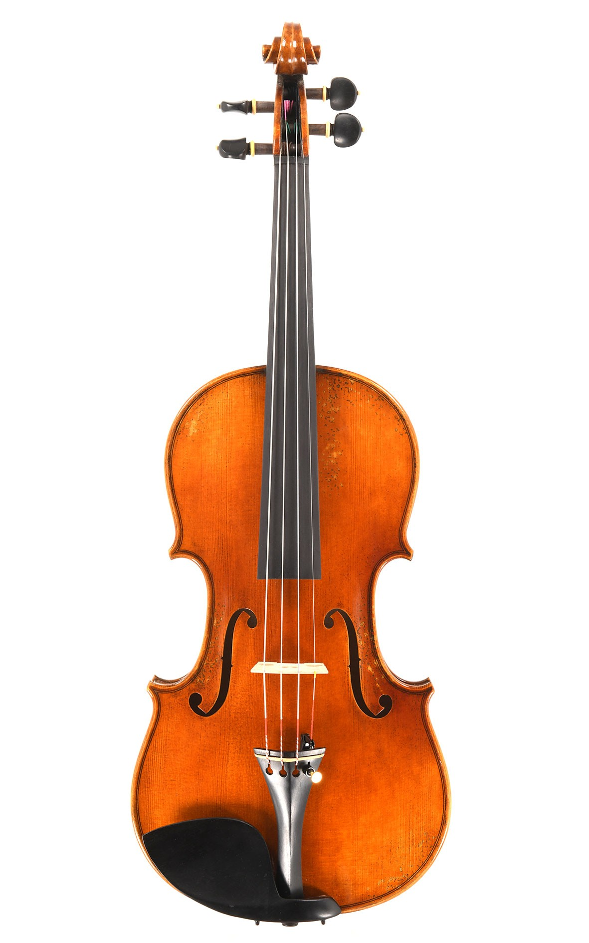 Violin with a great sound from the CV Selectio op. 8 line