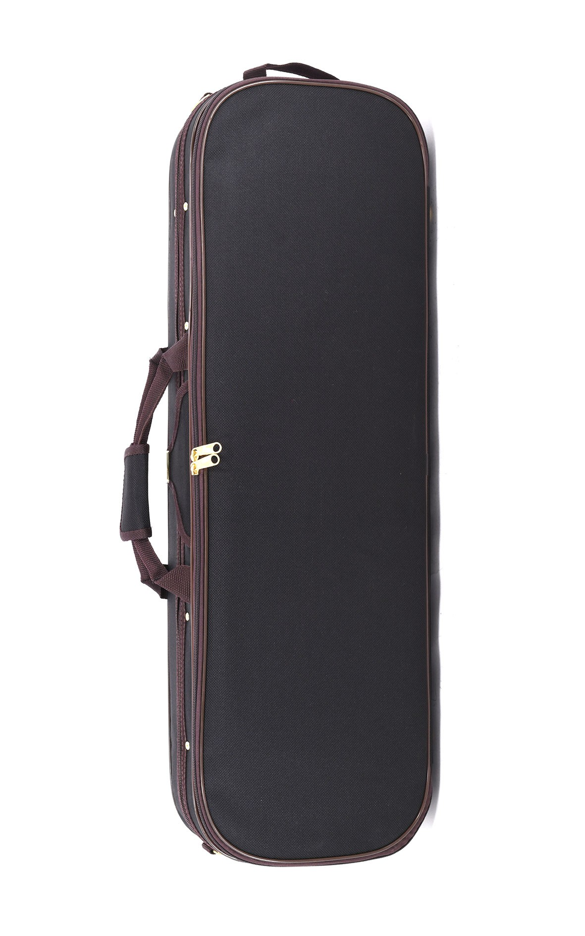 Practical and well-equipped violin case